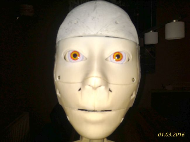 Head and eyes with integrated camera for gesture recognition